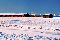 /images/133/2006-02-hartsel-snow-buf-shacks.jpg - #02775: Shacks by Hartsel … Feb 2006 -- Hartsel, Colorado