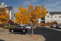 /images/133/2006-10-01-lone-fall22.jpg - #02946: Remington residence in Lone Tree … Oct 2006 -- Remington, Lone Tree, Colorado