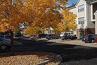 /images/133/2006-10-01-lone-fall23.jpg - #02947: Remington residence in Lone Tree … Oct 2006 -- Remington, Lone Tree, Colorado