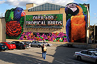 /images/133/2006-10-15-niag-birds01.jpg - #03054: Over 400 Tropical Birds - Macaw picture … images of Niagara Falls … Oct 2006 -- Niagara Falls, Ontario.Canada