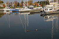 /images/133/2006-10-21-oak-bronte04.jpg - #03117: images of Oakville … Oct 2006 -- Bronte Harbour, Oakville, Ontario.Canada
