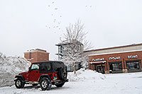/images/133/2006-12-29-engle-rei-view05.jpg - #03338: red Jeep Wrangler in front of REI #61with 23 birds flying in the sky … December 2006 -- Englewood, Colorado