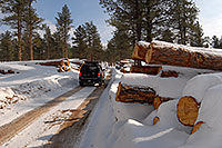 /images/133/2007-01-27-sed-logs-xterra1.jpg - #03415: Xterra by snowy logs  … Jan 2007 -- Turnbull, Colorado