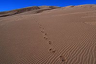 /images/133/2007-04-14-sand-dunes03.jpg - #03777: footprints in the sand of Great Sand Dunes … April 2007 -- Great Sand Dunes, Colorado