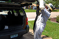 /images/133/2007-05-20-lake-bee-keeper1.jpg - #03839: Beekeeper Phil moving bees to a new home - A swarm of 2,500 bees with a queen moved into the back of my Xterra … May 2007 -- Lakewood, Colorado