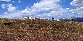 /images/133/2007-06-10-elbert-skier2-pano.jpg - #03895: Skier and hiker with dogs  walking up the North Trail of Mt Elbert, Colorado