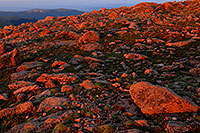 /images/133/2007-06-30-evans-morn-rocks.jpg - #04150: sunrise colors at Mt Evans … June 2007 -- Mt Evans, Colorado