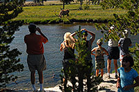 /images/133/2007-07-21-y-river-elk-ppl.jpg - #04331: People watching Bull Elk from roadside and across a river … July 2007 -- Yellowstone, Wyoming