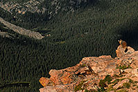 /images/133/2007-08-26-rm-forest-9411.jpg - #04648: Marmot overlooking Forest Canyon (11,716 ft) along Trail Ridge Road … August 2007 -- Forest Canyon, Rocky Mountain National Park, Colorado