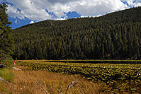 /images/133/2007-09-22-rm-cub-lake-3687.jpg - #04684: View of Cub Lake … Sept 2007 -- Cub Lake, Rocky Mountain National Park, Colorado