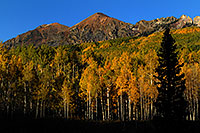/images/133/2007-09-25-kebler-4655.jpg - #04737: Images of Kebler Pass … Sept 2007 -- Kebler Pass, Colorado