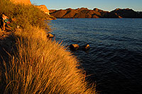 /images/133/2007-10-07-sag-eve-5980.jpg - #04726: Evening at Saguaro Lake … Oct 2007 -- Saguaro Lake, Arizona