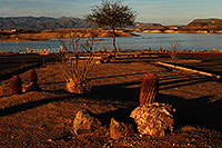 /images/133/2007-12-02-pleasant-7507.jpg - #04761: Images of Lake Pleasant … Dec 2007 -- Lake Pleasant, Arizona