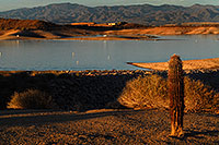 /images/133/2007-12-02-pleasant-7513.jpg - #04803: Images of Lake Pleasant … Dec 2007 -- Lake Pleasant, Arizona