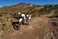 /images/133/2008-02-09-supers-xr-9698.jpg - #04830: XR250 in Superstition Mountains … Feb 2008 -- Tortilla Flat Trail, Superstitions, Arizona