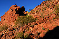 /images/133/2008-03-09-camelback-3818.jpg - #04926: Hikers at Camelback Mountain in Phoenix … March 2008 -- Camelback Mountain, Phoenix, Arizona