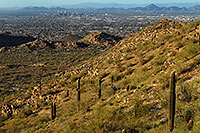 /images/133/2008-03-14-southm-4134.jpg - #04946: View North at Phoenix from South Mountain … March 2008 -- South Mountain, Phoenix, Arizona