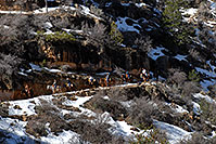 /images/133/2008-03-30-gc-ba-mul-6226.jpg - #05042: Mule riding group and snow spots along Bright Angel Trail in Grand Canyon … March 2008 -- Bright Angel Trail, Grand Canyon, Arizona