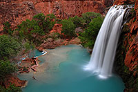 /images/133/2008-04-18-hav-havasu-2881.jpg - #05252: Havasu Falls - 120 ft drop (37 meters) … April 2008 -- Havasu Falls!, Havasu Falls, Arizona