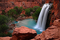 /images/133/2008-04-18-hav-havasu-2884.jpg - #05254: Havasu Falls - 120 ft drop (37 meters) … April 2008 -- Havasu Falls!, Havasu Falls, Arizona