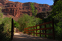 /images/133/2008-04-20-hav-navajo-3701.jpg - #05307: Hiker crossing the second bridge from Havasu Falls, by Navajo Falls … April 2008 -- Havasu Falls, Arizona