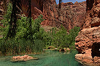 /images/133/2008-05-18-hav-creek-8326.jpg - #05418: Havasu Creek just before ladder up the trail - near Beaver Falls … May 2008 -- Havasu Creek, Havasu Falls, Arizona