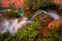 /images/133/2008-05-18-hav-moon-cr-8288.jpg - #05425: A spring flowing into Havasu Creek below - near Mooney Falls … May 2008 -- Havasu Creek, Havasu Falls, Arizona