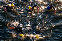 /images/133/2008-11-23-ironman-swim_9-52637.jpg - #06222: 0:42:24 - KIERAN DOE #30 leading #5 and ANDREAS RAELERT #9 (middle) - Swim Pros … November 2008 -- Tempe Town Lake, Tempe, Arizona