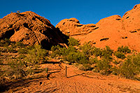 /images/133/2008-12-05-papago-view-59934.jpg - #06401: Buttes of Papago Park … December 2008 -- Papago Park, Phoenix, Arizona