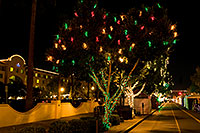 /images/133/2008-12-05-tempe-mill-road-60309.jpg - #06358: Christmas lights along Mill Road in Tempe - view South … December 2008 -- Mill Road, Tempe, Arizona