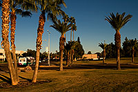 /images/133/2008-12-09-tempe-kiwanis-60882.jpg - #06433: Metro bus and traffic at Kiwanis Park … December 2008 -- Kiwanis Park, Tempe, Arizona