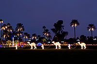/images/133/2008-12-15-mesa-temple-caravan-64183.jpg - #06521: Mesa Temple Garden Christmas Lights Display … December 2008 -- Mesa Arizona Temple, Mesa, Arizona