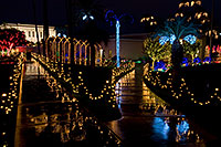 /images/133/2008-12-15-mesa-temple-walk-64203.jpg - #06526: Mesa Temple Garden Christmas Lights Display … December 2008 -- Mesa Arizona Temple, Mesa, Arizona