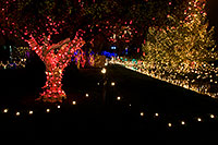 /images/133/2008-12-16-mesa-temple-64450.jpg - #06485: Mesa Temple Garden Christmas Lights Display … December 2008 -- Mesa Arizona Temple, Mesa, Arizona
