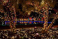 /images/133/2008-12-20-mesa-temple-morning-64994.jpg - #06554: Christmas Lights by Mesa Arizona Temple … December 2008 -- Mesa Arizona Temple, Mesa, Arizona