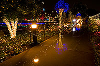 /images/133/2008-12-22-mesa-temple-walk-66194.jpg - #06585: Christmas Lights at Mesa Arizona Temple … December 2008 -- Mesa Arizona Temple, Mesa, Arizona