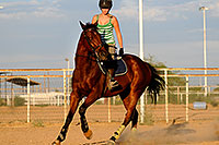 /images/133/2009-06-30-queen-horses-104961.jpg - #07468: Horseback riding in Queen Creek … June 2009 -- Queen Creek, Arizona