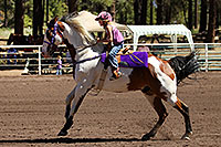 /images/133/2010-06-05-naha-horses-poles-1603.jpg - #08147: NAHA Pole Bending event in Flagstaff … June 2010 -- Fort Tuthill County Park, Flagstaff, Arizona