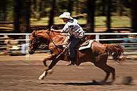 /images/133/2010-06-05-naha-horses-speed-2388.jpg - #08166: NAHA Turn and Burn event in Flagstaff … June 2010 -- Fort Tuthill County Park, Flagstaff, Arizona