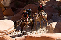 /images/133/2010-06-19-havasu-people-6262.jpg - #08195: Riders along Havasupai Trail … June 2010 -- Havasupai Trail, Havasu Falls, Arizona