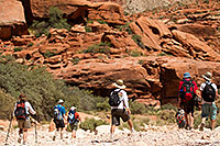 /images/133/2010-06-21-havasu-people-7590.jpg - #08234: Hikers heading to Supai along Havasupai Trail … June 2010 -- Havasupai Trail, Havasu Falls, Arizona