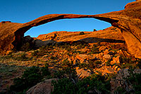 /images/133/2010-09-11-arches-landscape-32601.jpg - #08711: Landscape Arch in Arches National Park … September 2010 -- Landscape Arch, Arches Park, Utah