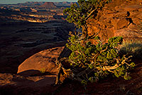 /images/133/2010-09-27-canyon-grand-35160.jpg - #08793: Grand View lookout in Canyonlands National Park … September 2010 -- Grand View, Canyonlands, Utah