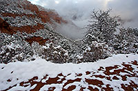 /images/133/2011-03-22-sedona-snowy-61591.jpg - #09197: Morning in Sedona … March 2011 -- Schnebly Hill, Sedona, Arizona