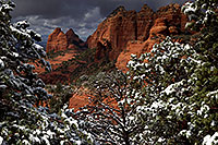 /images/133/2011-03-22-sedona-snowy-61890.jpg - #09167: Morning in Sedona … March 2011 -- Schnebly Hill, Sedona, Arizona