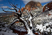 /images/133/2011-04-10-sedona-coffeepot-66329.jpg - #09237: Morning snow view of Thunder Mountain (Capital Butte) in Sedona … April 2011 -- Thunder Mountain, Sedona, Arizona