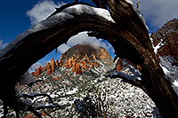 /images/133/2011-04-10-sedona-coffeepot-66333.jpg - #09203: Morning snow view of Thunder Mountain (Capital Butte) through a tree arch in Sedona … April 2011 -- Thunder Mountain, Sedona, Arizona