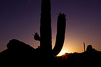 /images/133/2011-05-14-supers-star-68425.jpg - #09264: Sunset in Superstitions … May 2011 -- Superstitions, Arizona