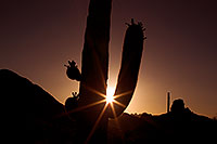 /images/133/2011-05-15-supers-star-71181.jpg - #09266: Sunset in Superstitions … May 2011 -- Superstitions, Arizona