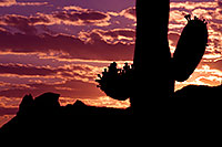 /images/133/2011-05-20-supers-sunset-71175.jpg - #09298: Sunset in Superstitions … May 2011 -- Superstitions, Arizona